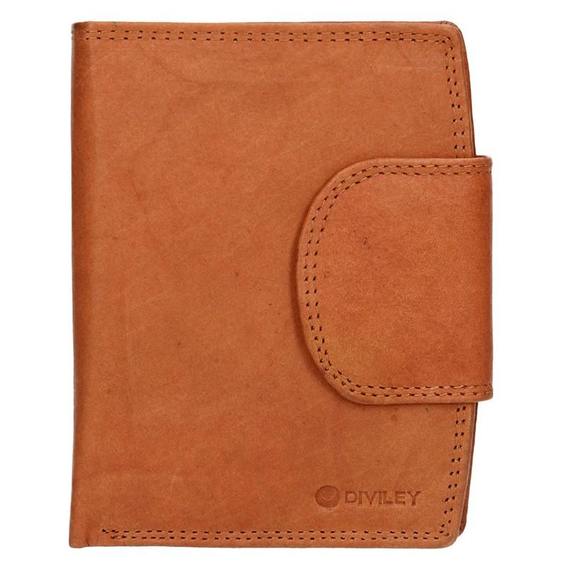 Pánska kožená peňaženka Diviley Luiss - koňak