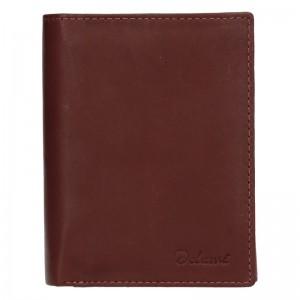 Pánská kožená peněženka Diviley Merkur - hnědá