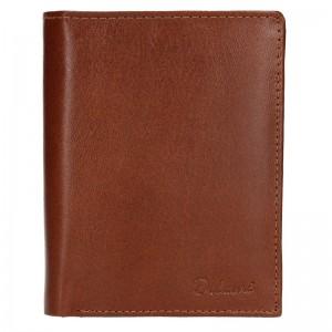 Pánska kožená peňaženka Diviley Merkúr - hnedá