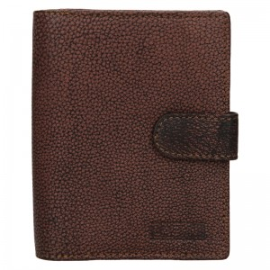 Dámska kožená peňaženka Lagen Bronia - hnedá