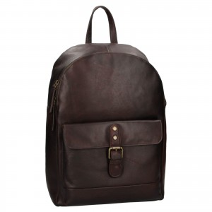 Pánsky kožený batoh Ashwood Will - hnedá