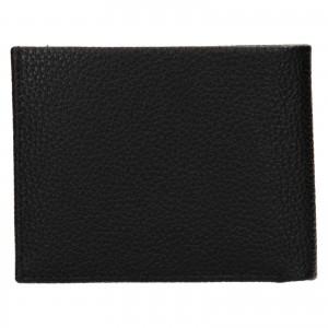 Pánska kožená peňaženka Calvin Klein Delne - čierna